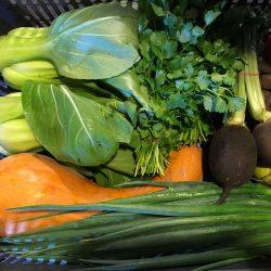 Organic Small Vegetable Box (pc)