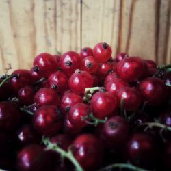 Organic Red Currants (250g)