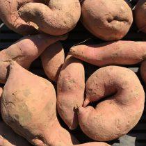 Organic Sweet Potatoes (orange) (kg)