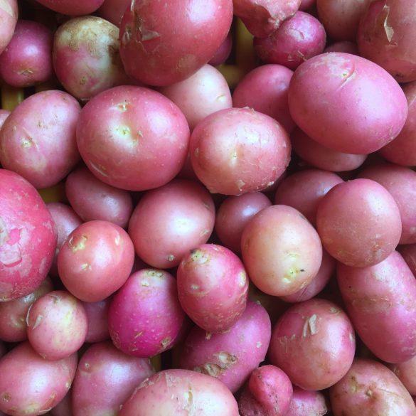 Organic New Potatoes (kg)