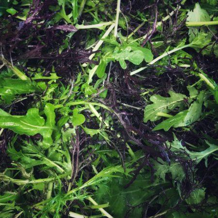 Organic Oriental salad mix (200 g)