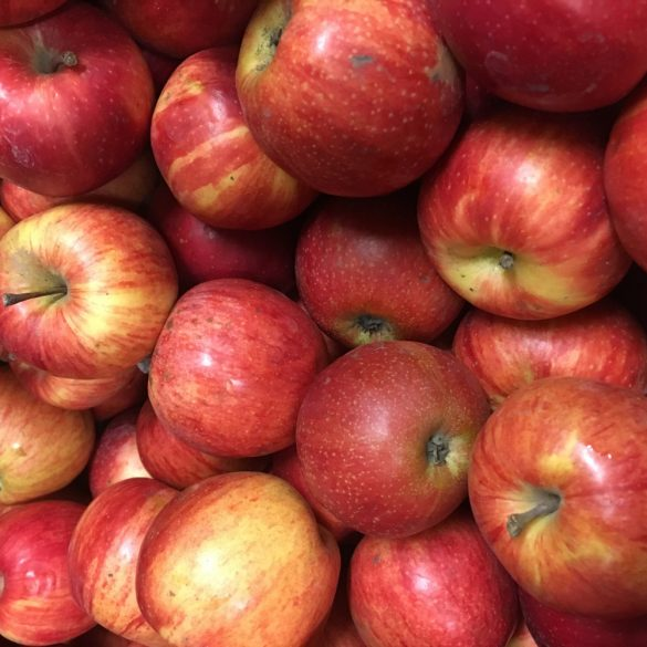 Organic Apples - Florina (kg)