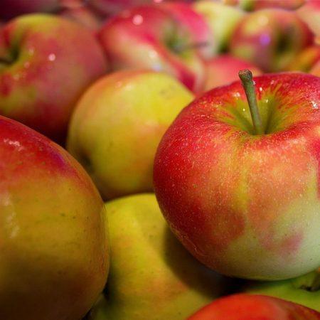Organic Apples - Relinda