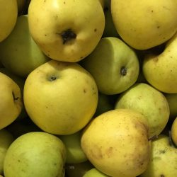 Organic Apples - Goldrush (kg)