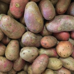 Organic Potatoes - Red (kg)