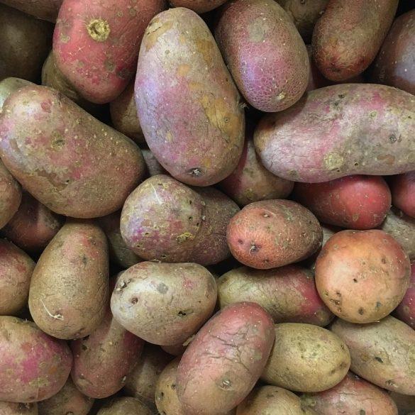 Organic Potatoes - Red (kg)