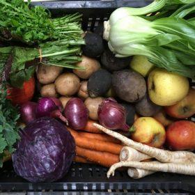 Bio Zöldség Választék